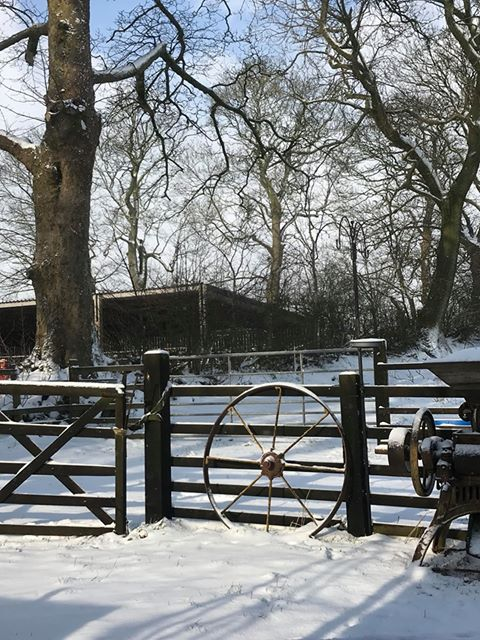 Hedgerow Luxury glamping in winter
