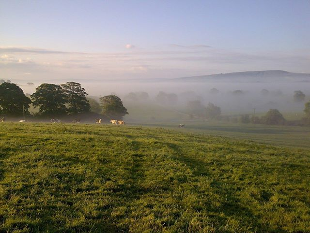 Mist over pendle hill