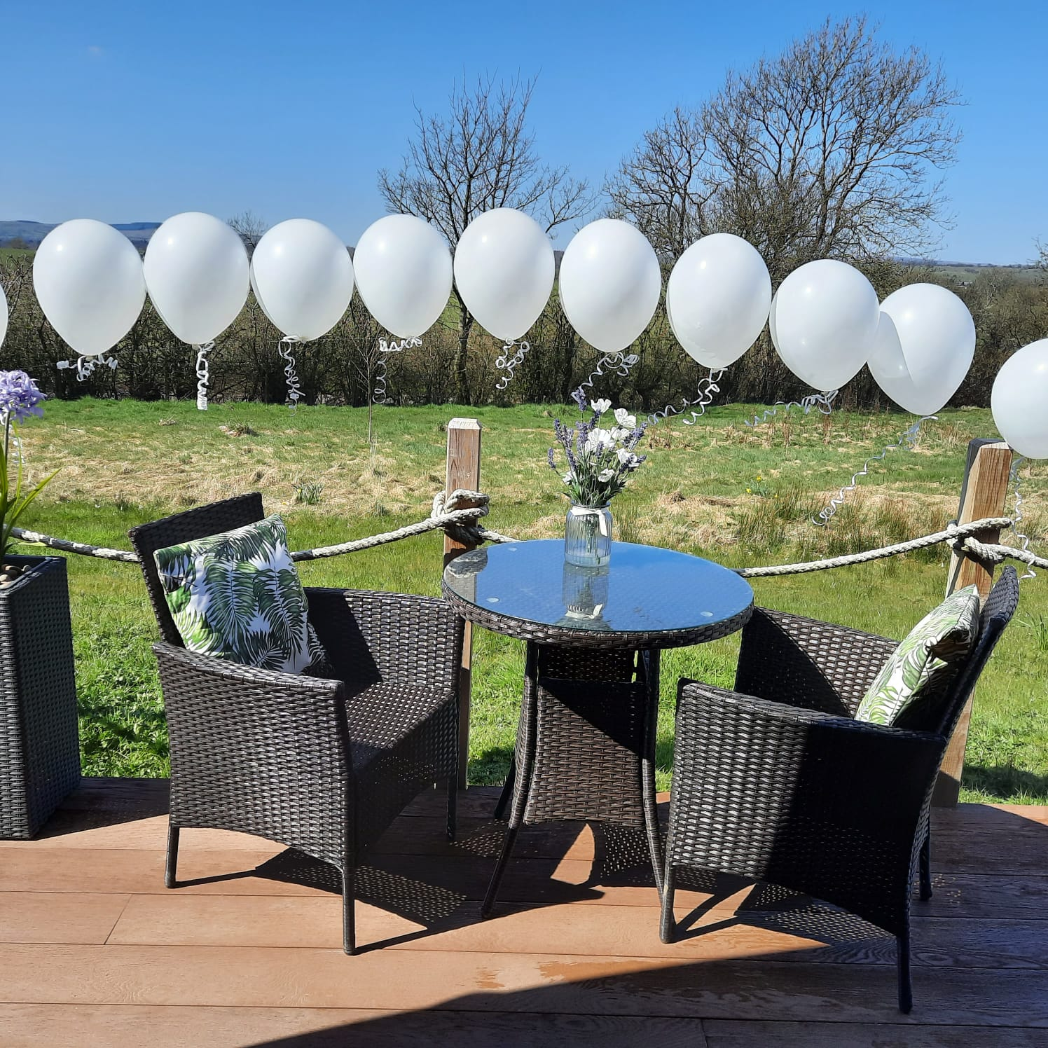 celebrate special occasions at hedgerow glamping