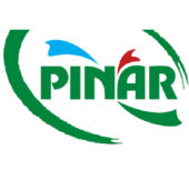 19-pınar