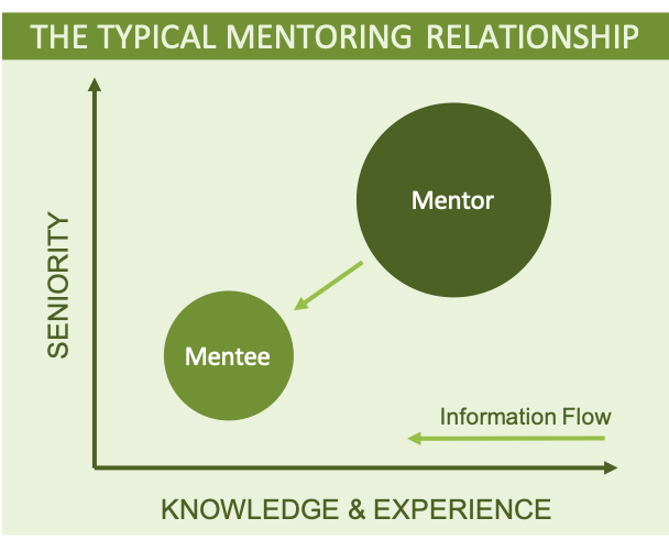 A diagram showing a senior person mentoring a less senior person in work