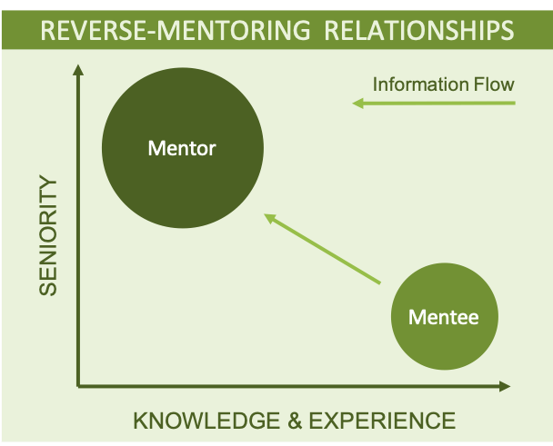 Diagram showing skills and knowledge in reverse mentoring in work