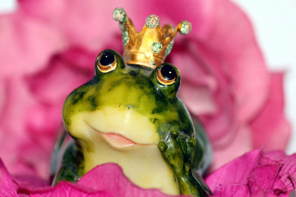 A frog prince might be suffering from the Dunning-Kruger effect