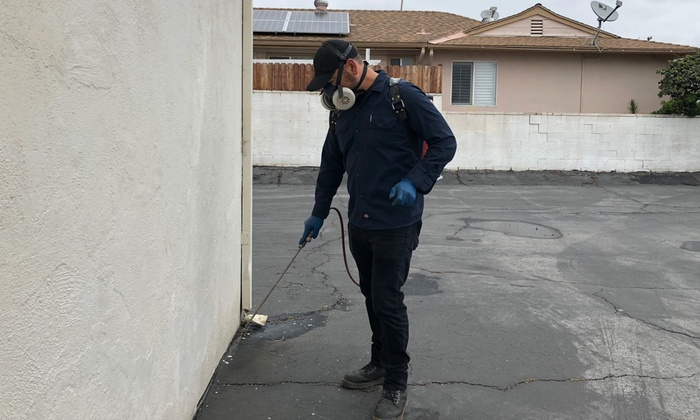 Chemical And Non-chemical Termite Treatments