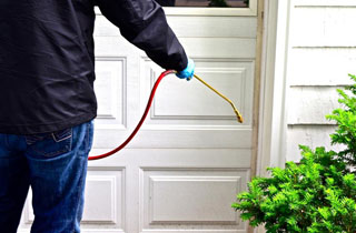 Jenning Pest Control Burbank a renowned name in Pest Control Services