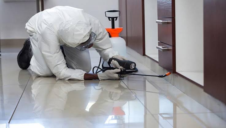 How to Select a Pest Control Service Provider