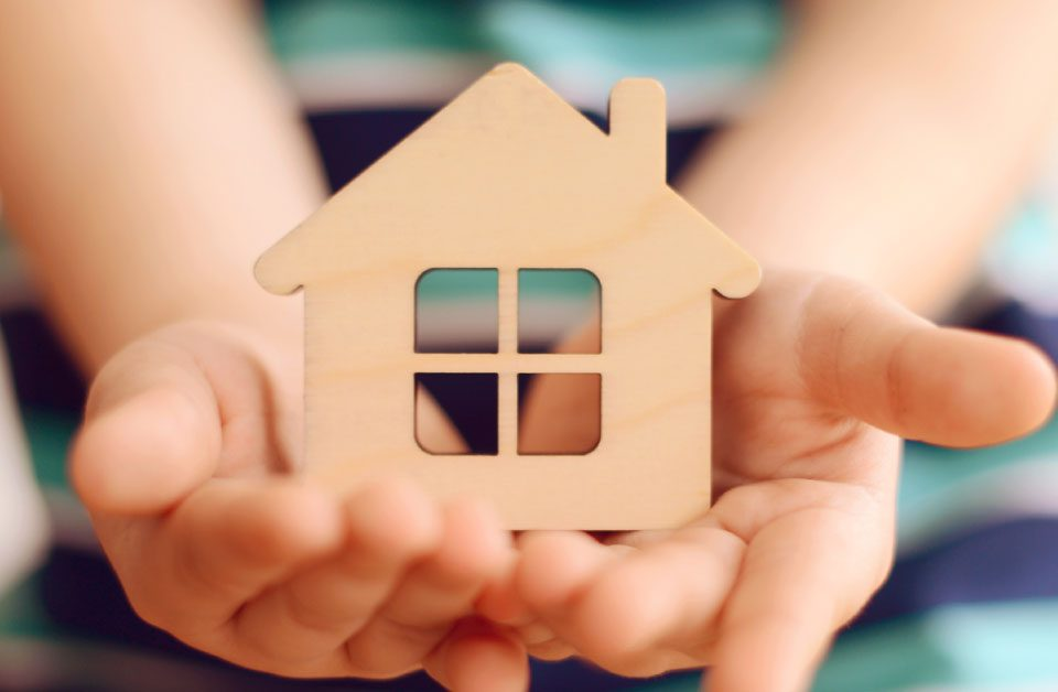 Guidelines for Pest-free House