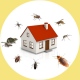 Strength of Pest Control Glendale