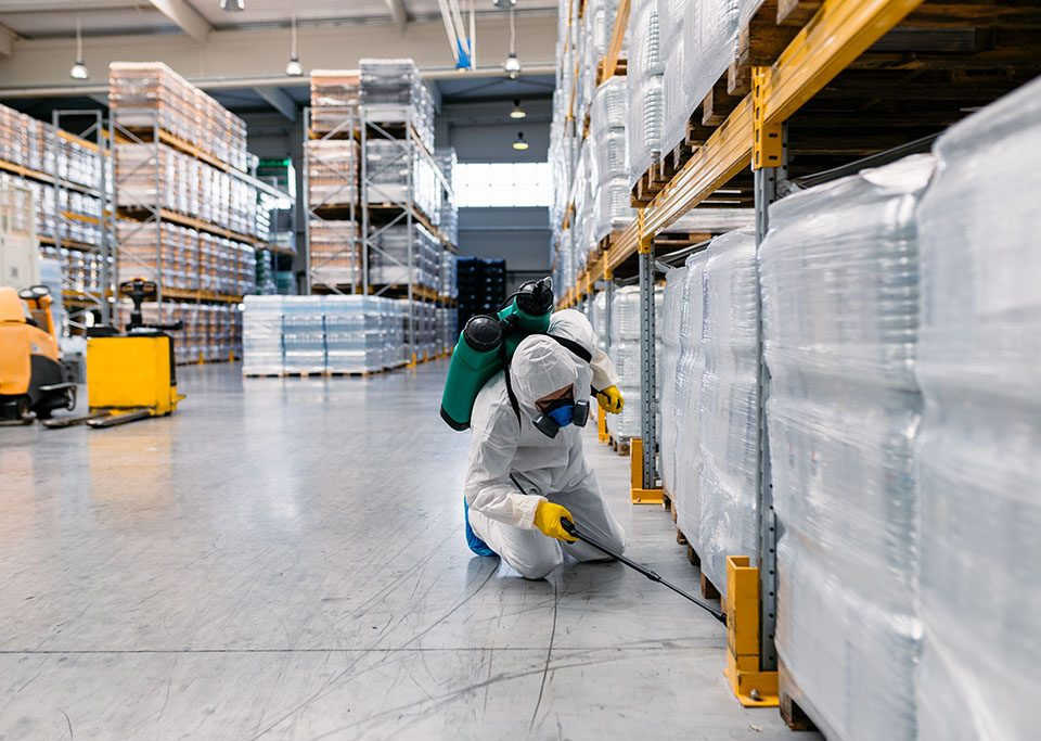 Signs of Pests in Warehouse
