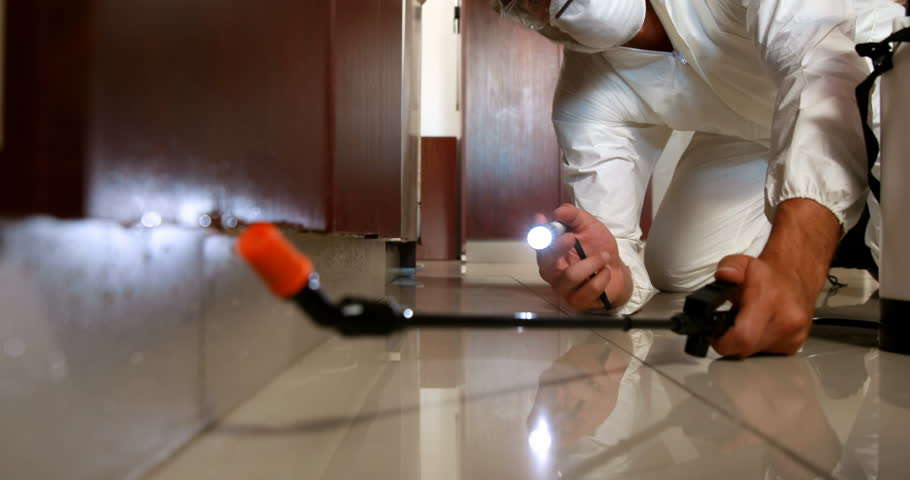Fumigation to make your House Termite Free