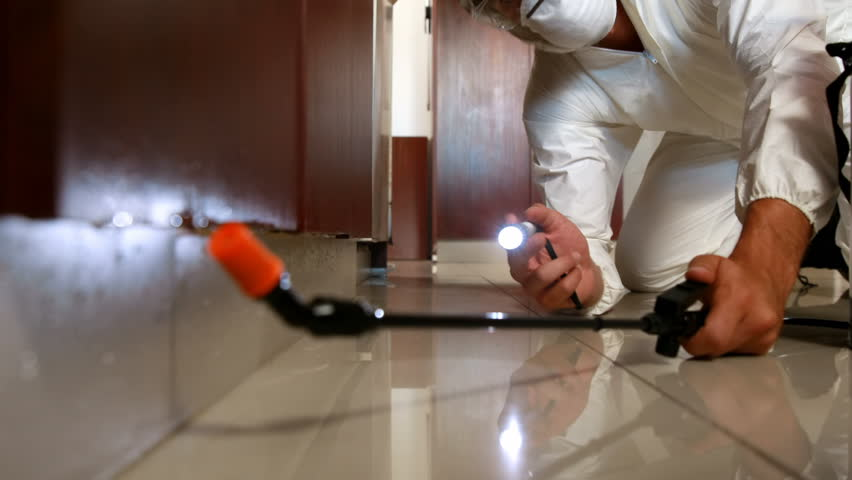 Health Hazard Precautions from Chemicals used for Pest Control
