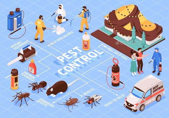 Looking for Commercial Pest Control Solutions