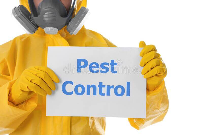 Are you looking for Promising Pest Control Services