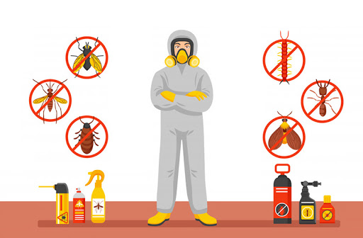Find your Suitable Pest Control Solution Provider