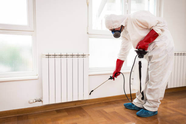 What is the Termite Control Service Promise