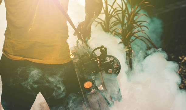 The Best Termite Fumigation Service in Los Angeles