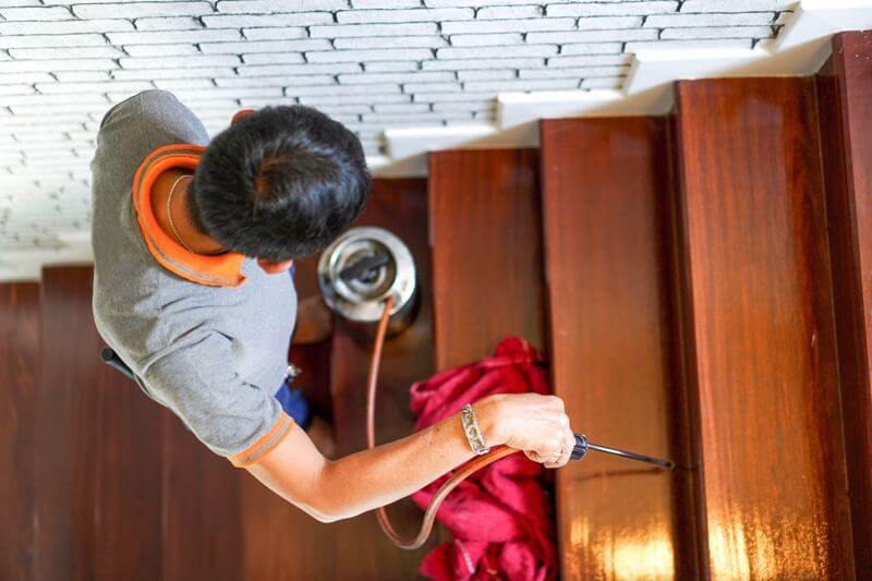 Need to Hire the Experienced Termite Repair Specialist in Altadena