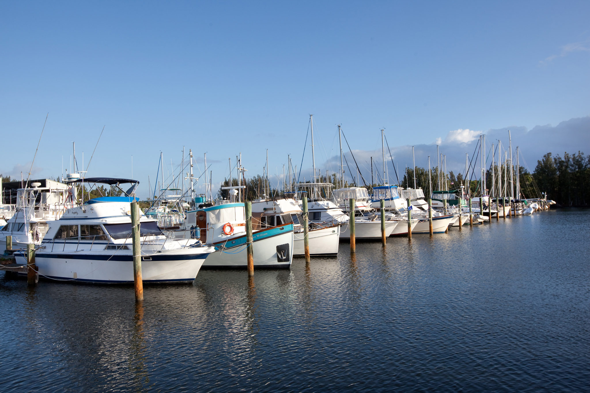 Live at Beautiful Harbortown Marina