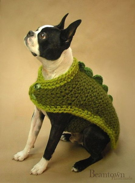 sweaters for dog