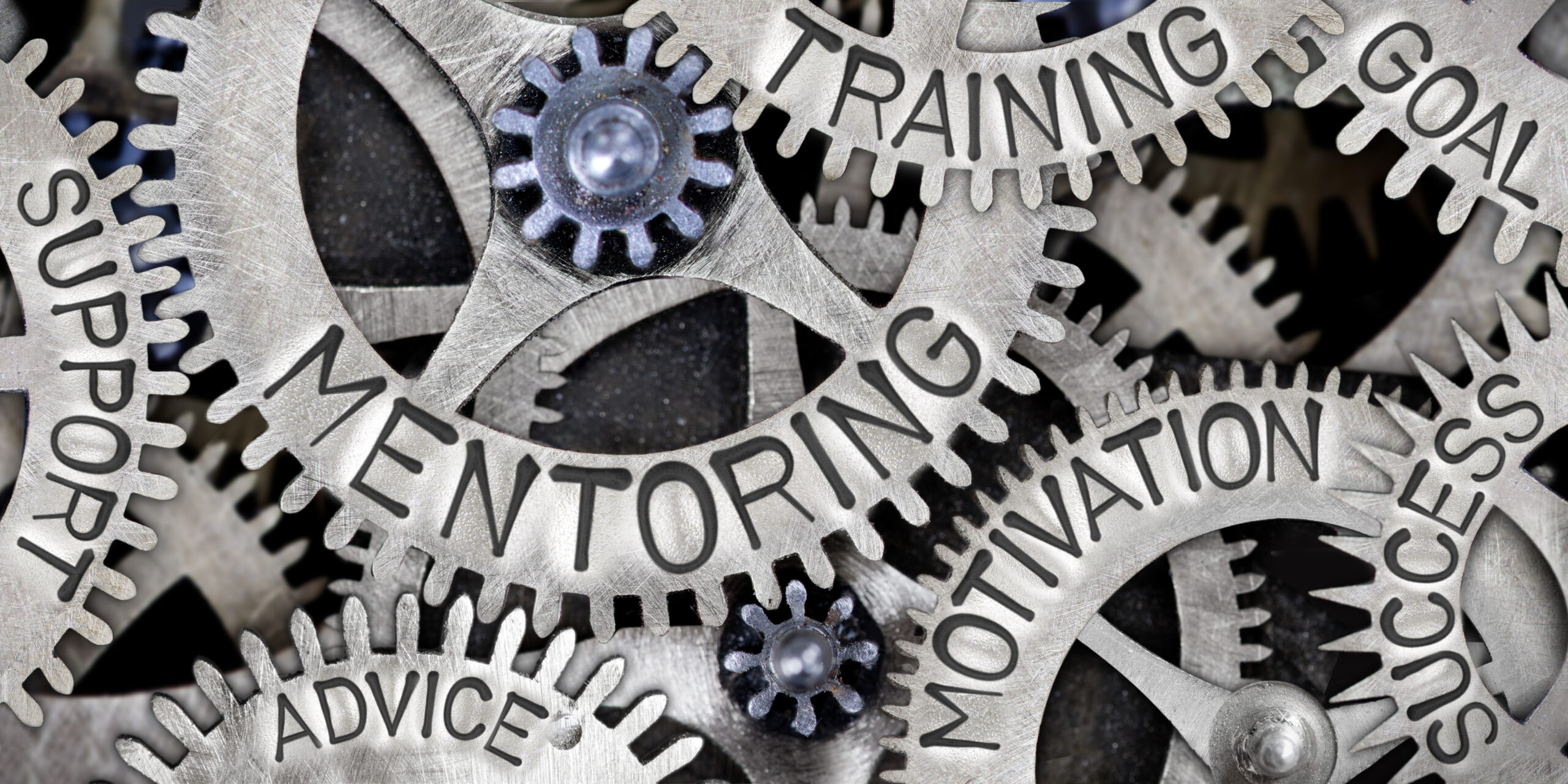 https://conflictinsights.co.uk/2021/06/10-insights-into-mediation-mentoring/