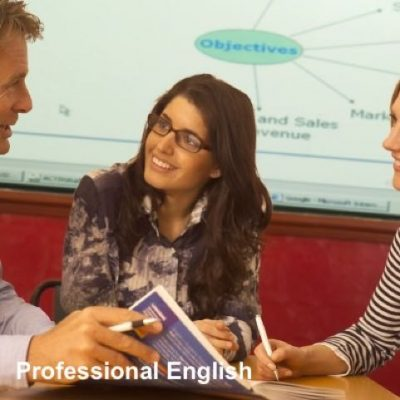 Professional English Courses