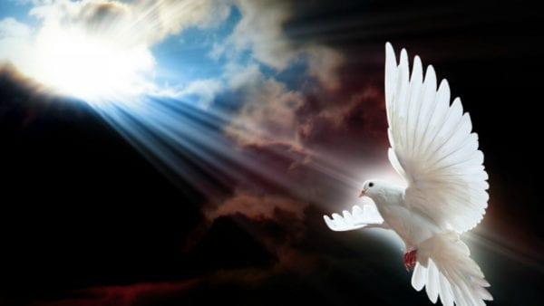 God's Messenger HD Desktop Background