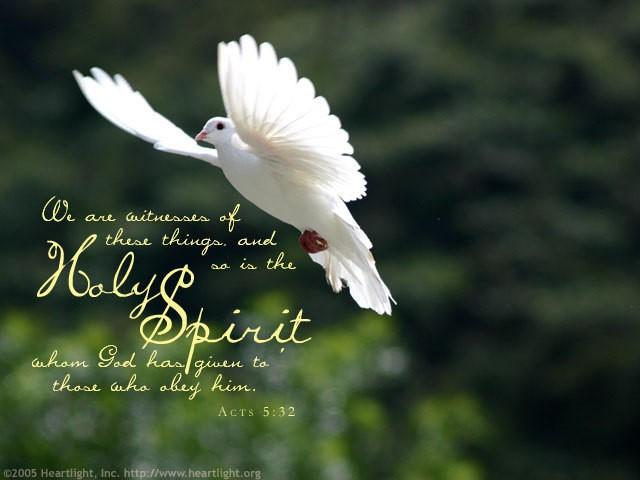Sacred Heart Saturdays