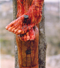 Parish Devotion for Tuesday 7th July 2020 – Month of the Precious Blood –  Tuesdays