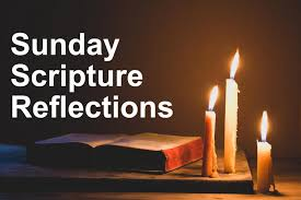 Dr. Scott Hahn - Gospel Reflections 17-01-2021
