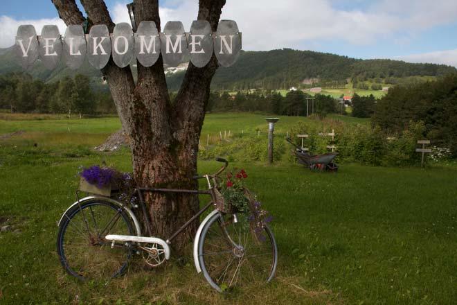 Norway landscape photography - Sheinwald