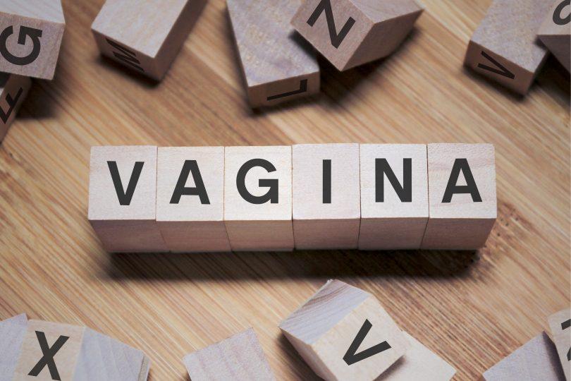 Vagina Vagina Vagina