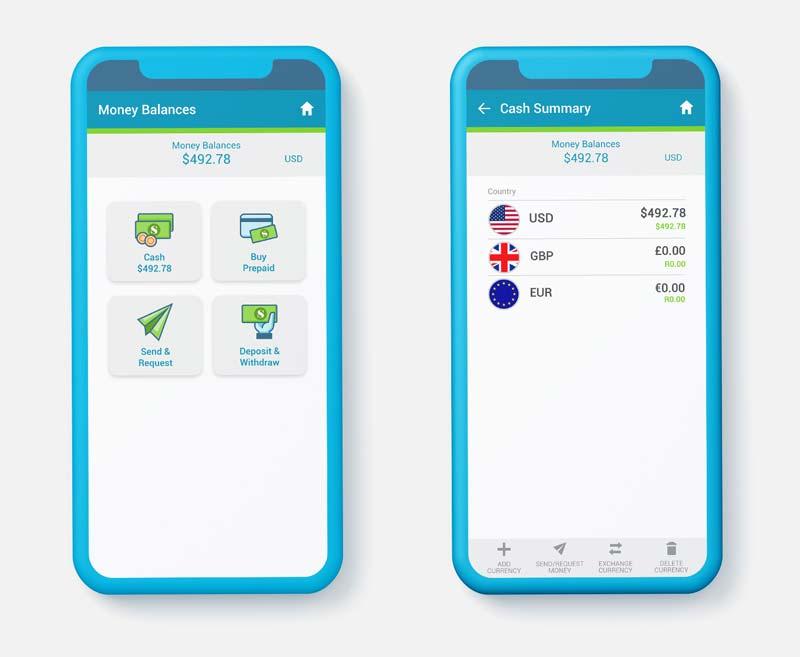 SendSpend Money Balances & Cash Sumary screenshots