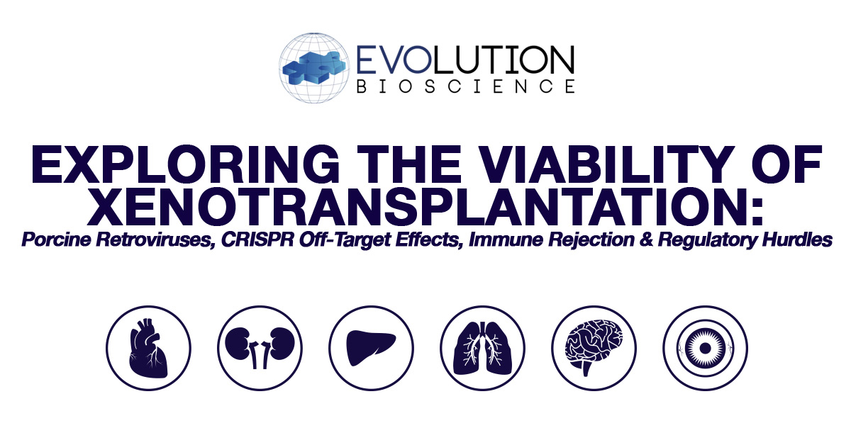 Exploring the History & Viability of Xenotransplantation: CRISPR Off-Target Effects, Porcine Retroviruses, Immune Response & Regulatory Hurdles
