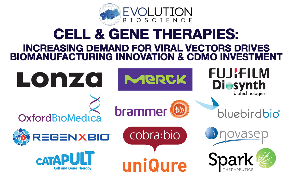 Cell & Gene Therapy: Increasing Demand for Viral Vectors Drives Biomanufacturing Innovation & CDMO Investment