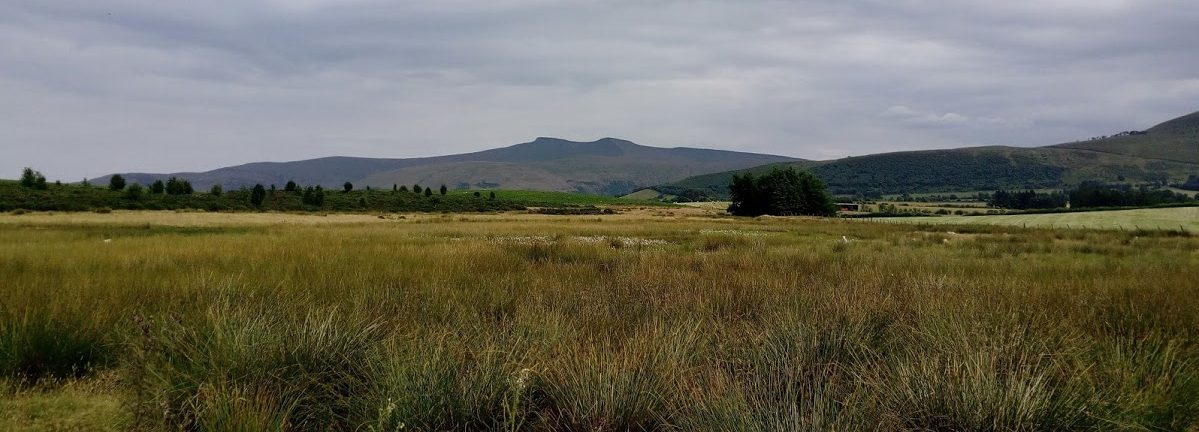 Pen y Fan view from nearby Mynydd Illtud