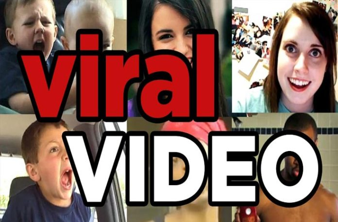 Sad, exciting or just plan Wow, viral videos tantalize our emotions in so many ways at some many different levels.