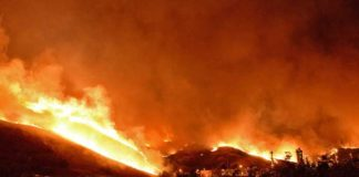 California Wildfires Spread to Large Area