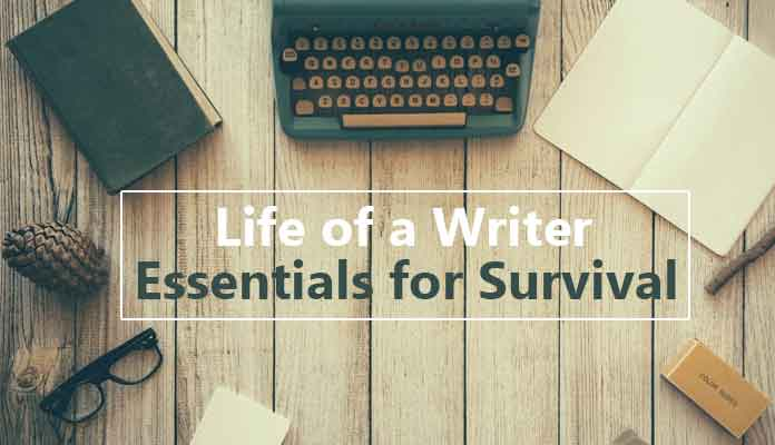 Life of a writer - image 1