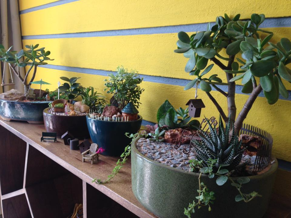 miniature garden (1)