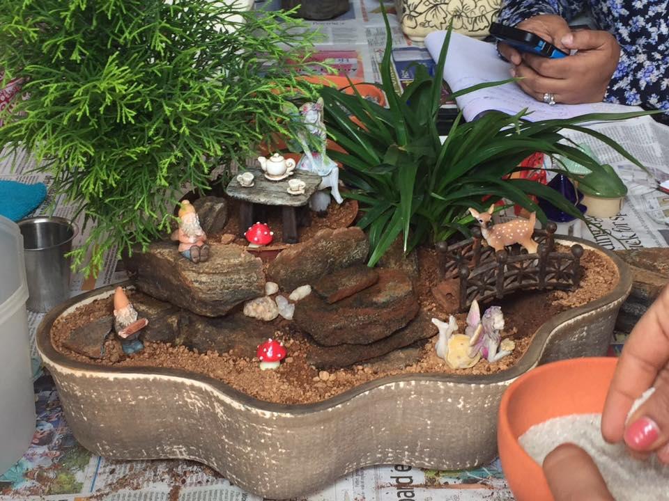 miniature garden (4)