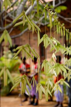 Coconut Leaf Toys Workshop