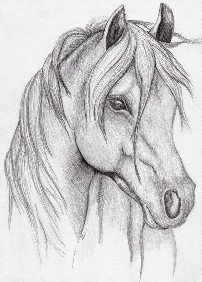 Sketching and Pencil Shading - Free Trial Live Session