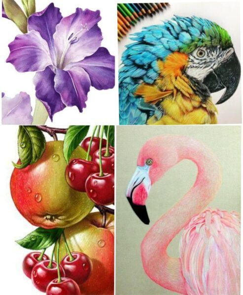 online color pencil sketching classes for beginners