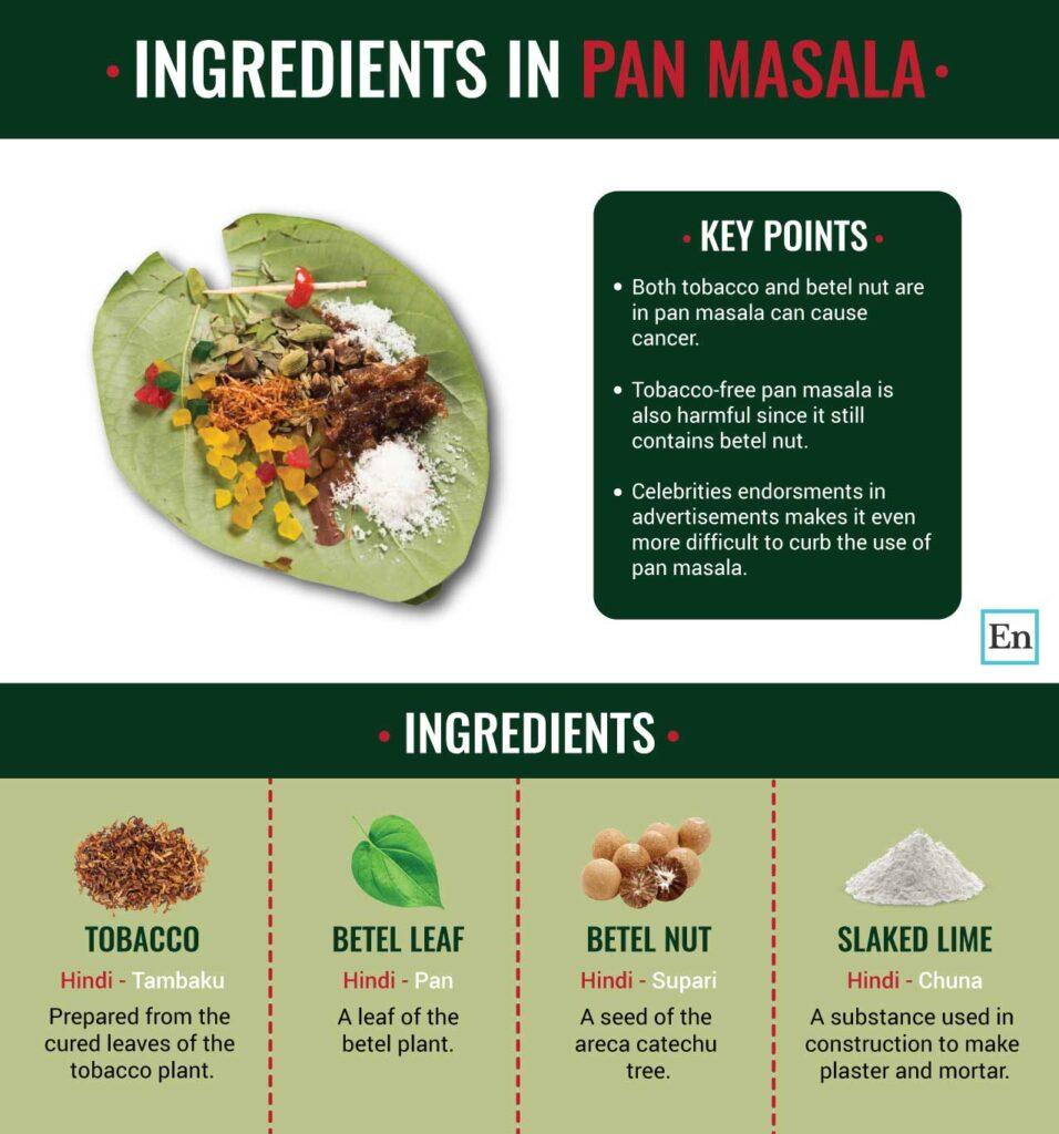 Is Pan Masala Harmful? - Infographic