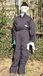 A photograph of our scarecrow, Ernest, leaned up against a fence, wearing glasses and a boiler suit.