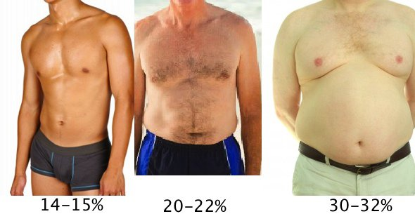mens body fat percentage