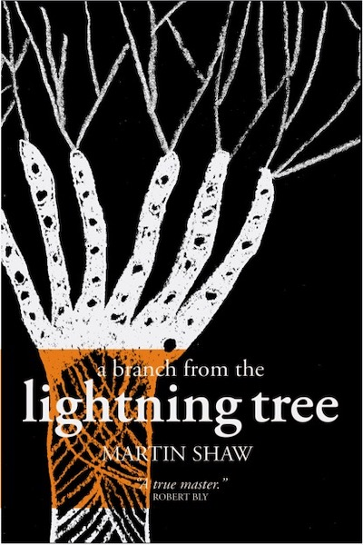 A Branch from the Lightning Tree, Second Edition, Martin Shaw