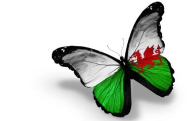 the-renewal-of-hwb-the-all-wales-national-learning-platform
