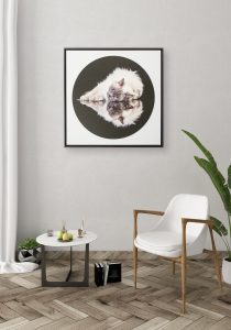 Float frame canvas wall art showing cat