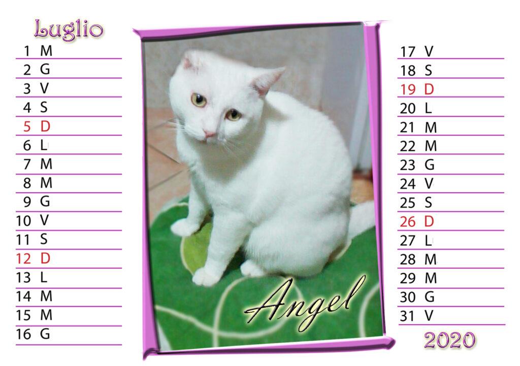 07 - luglio - angel